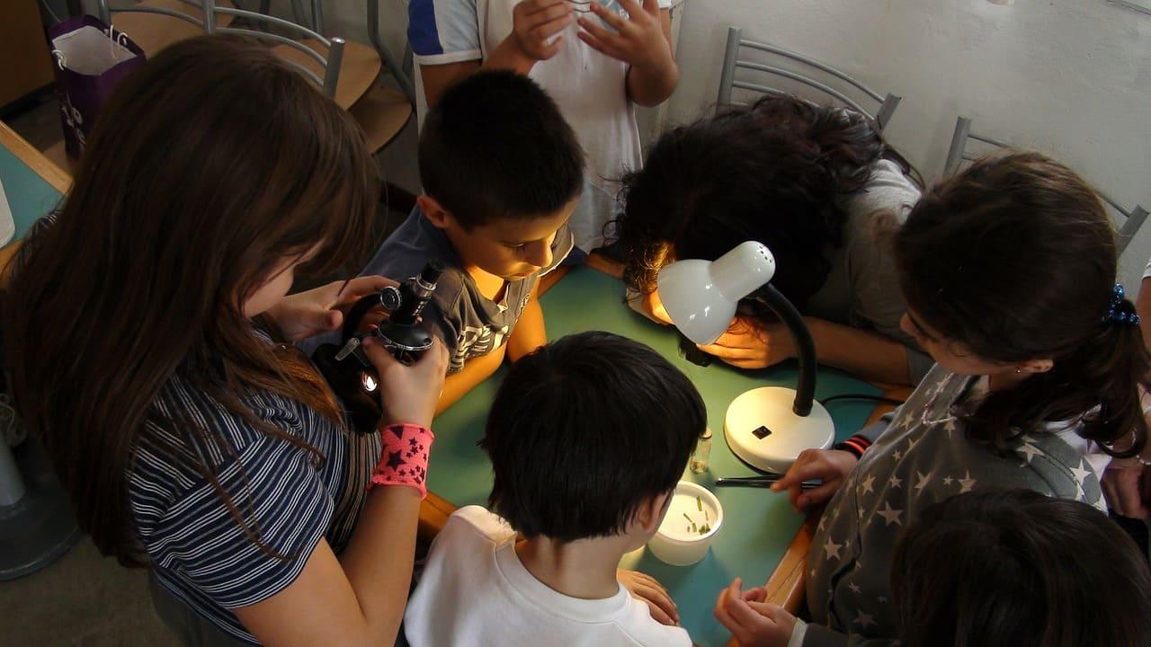 兒童顯微鏡觀察